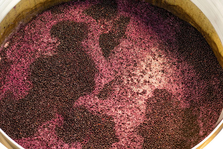 Carbonic Maceration